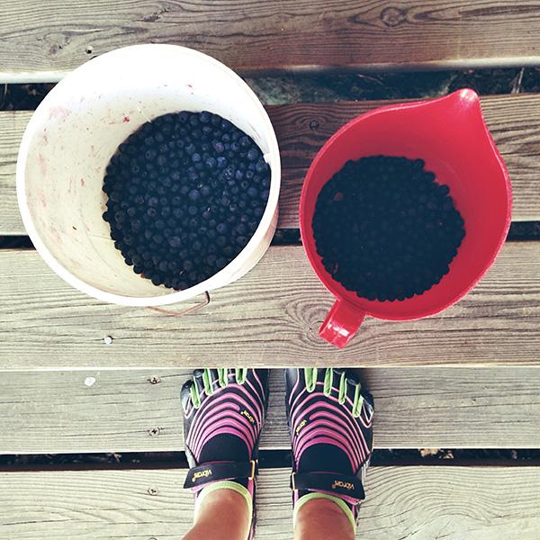 Käytiin mustikkametsässä #blueberry #summer #feet #vibram #fivefingers #barefoot