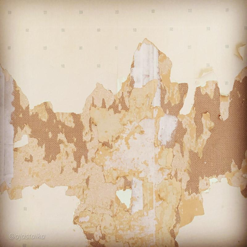 Tän viikon työmaa näyttää joltain kartalta. #renovation #wall #wallpaper #50s #apartmenthouse #remppa #remontointi #momokoti #50luku #kaksio #enjaksanutlaskeamontakokerrosta