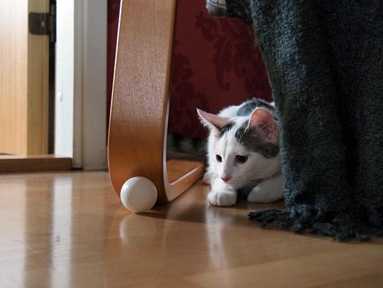 Nanna ja pingispallo