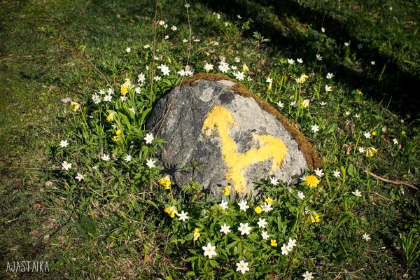 Kiveen maalattu