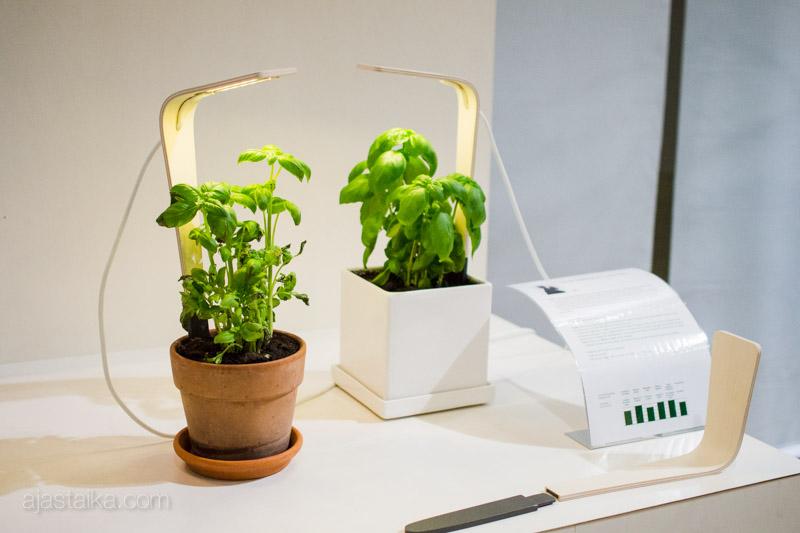 EcoDesign / Samuli Helavuo & Laura Väre: KasVa