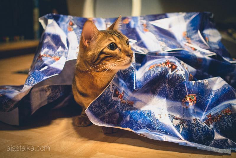 Eino rakastaa lahjapaperia